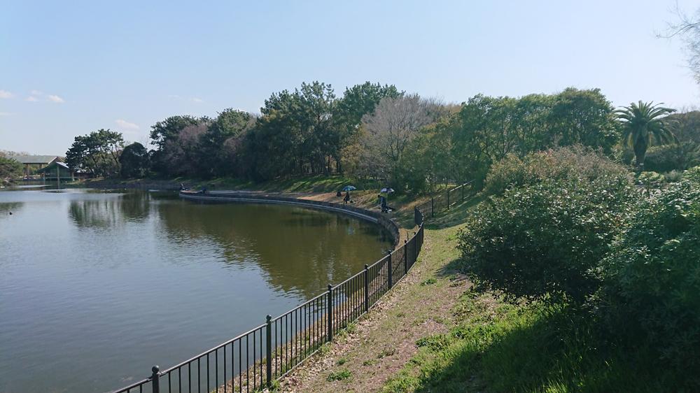 大泉池で釣り-大泉公園
